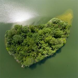 Visite virtuelle photo reserve ecologique vignette